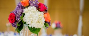 Bright white, orange, purple, and red flowers in vase
